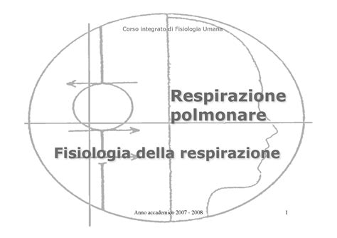dispense fisiologia umana fisiologia i fisiologia respirazione dispense