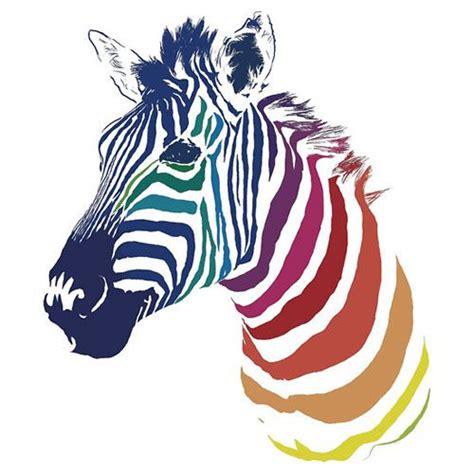 zebra color zebra in color jpg in color zebras