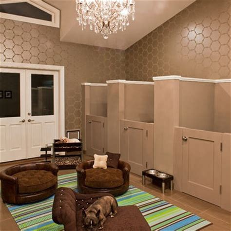 pet room pet room house