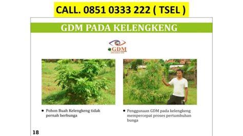 Pupuk Bunga Cair 0851 0333 222 tsel pupuk organik cair bunga gdm