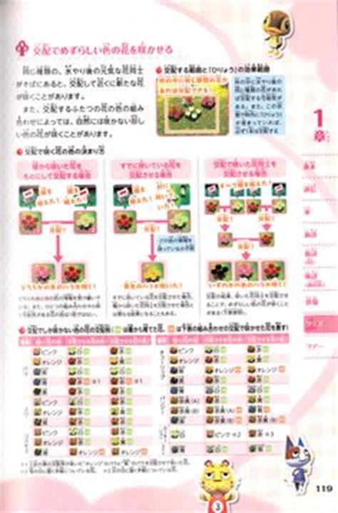 ancl face guide 1000 images about acnl guide on pinterest animal