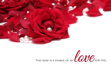 images of love roses beautiful love hd wallpapers free download in 1080p