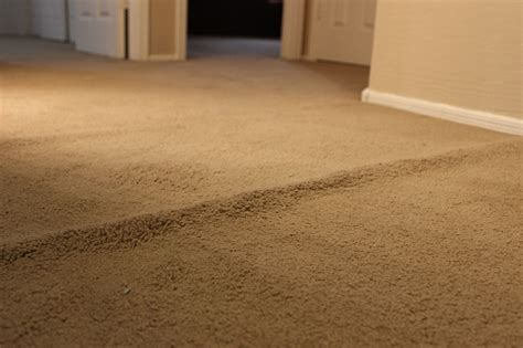 Buckled Carpet by How To Prevent Buckled Carpeting Dover Rugdover Rug