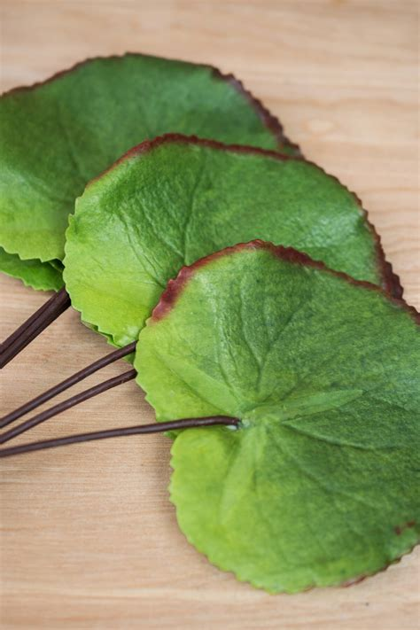 Galex Leaf Bundle (6 leaves) 10in Green Artificial