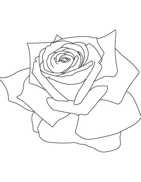 rose petal coloring page rose petals coloring page download free rose petals
