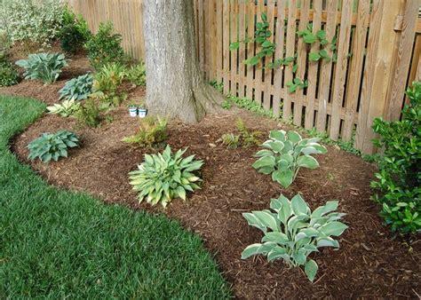 trees for backyard landscaping best 25 landscape around trees ideas on pinterest