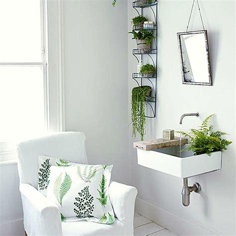 Badezimmer Pflanzen pflanzen im badezimmer die besten vorschl 228 ge f 252 r sie