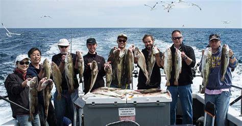 fishing boat hire brighton sea fishing trips gt brighton charter fishing gt grey viking ii