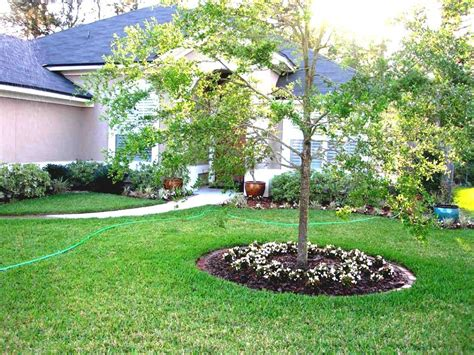 front house landscape design ideas cheap landscaping ideas for front of house greenvirals style
