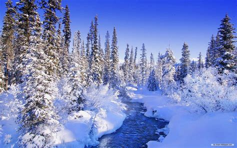 wallpaper desktop nature winter free desktop winter wallpapers wallpaper cave