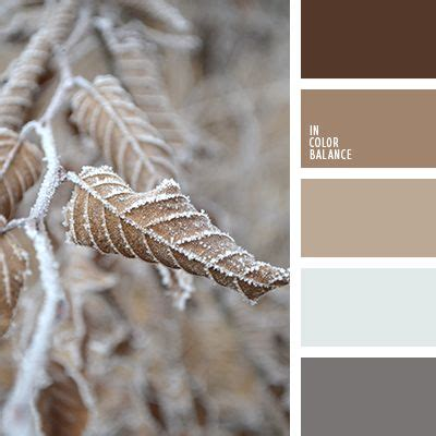 colors that match with brown 17 best ideas about winter color palettes on