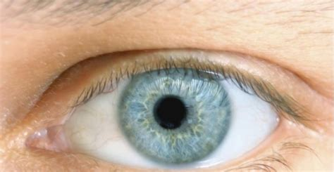 imagenes ojos desvelados se conf 237 a mas en la gente con los ojos marrones ecodiario es