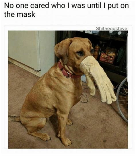 put on the no one cared who l was until l put on the mask shitheadsteve the mask meme on me me