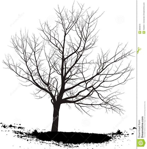 Y Tree Drawing by Black And White Tree Drawings Background 1 Hd Wallpapers