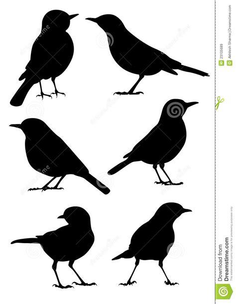 Silhueta Dos Pássaros - Vetor Ilustração do Vetor