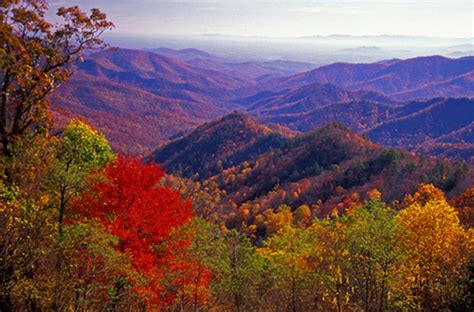 fall colors in virginia 5 places in virginia you to visit during fall