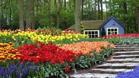 creare un bel giardino creare un bel giardino crea giardino realizzazione