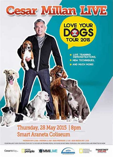 how to get cesar millan to your cesar millan live in manila 2015 cancelled philippine concerts