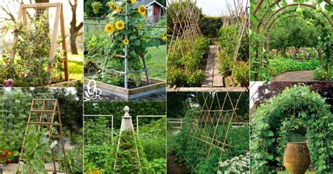 Diy Vertical Garden Cheap 20 Cheap And Easy Diy Trellis Vertical Garden Structures