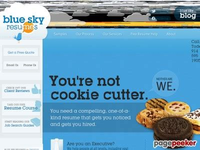 the blue sky guide to job search review – is it worth to
