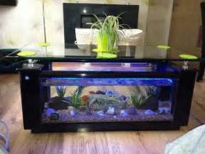 Coffee Fish Tank Table Great Ideas For Coffee Table Fish Tanks Glass Fish Tanks