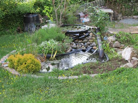 diy build a fish pond in your backyard