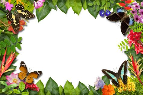 cornici da stare per foto cornici foto fai da te farfalle tutorial