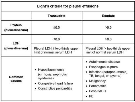 Light Criteria image gallery light s criteria