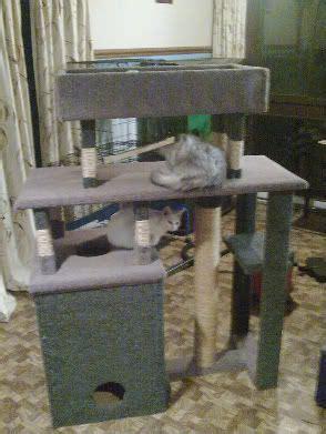 cat furniture plans  plans  cat trees
