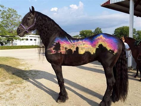 colores de cabellos bonitos los caballos mas bonitos del mundo youtube