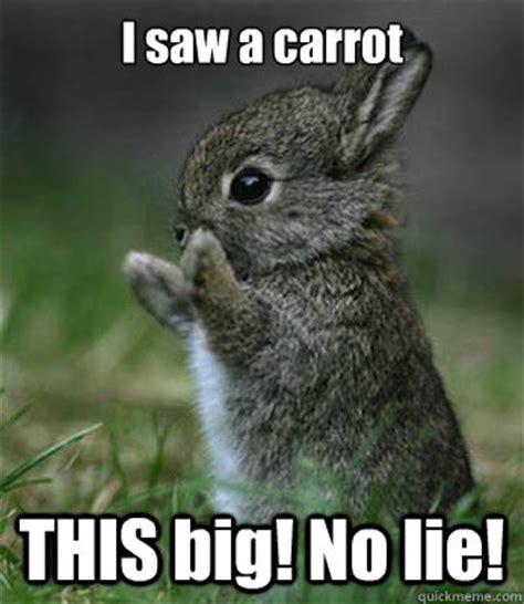 No Lie Meme - baby bunny rabbits kissing memes