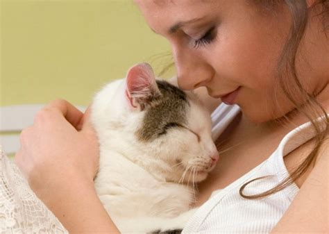 8 Ways Your Cat Shows It You by 10 Ways Your Cat Shows You