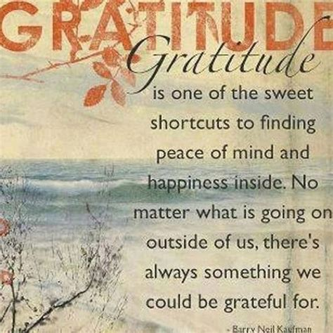 the gratitude journal for find happiness and peace in 5 minutes a day books cultivating gratitude the gratitude journal no matter