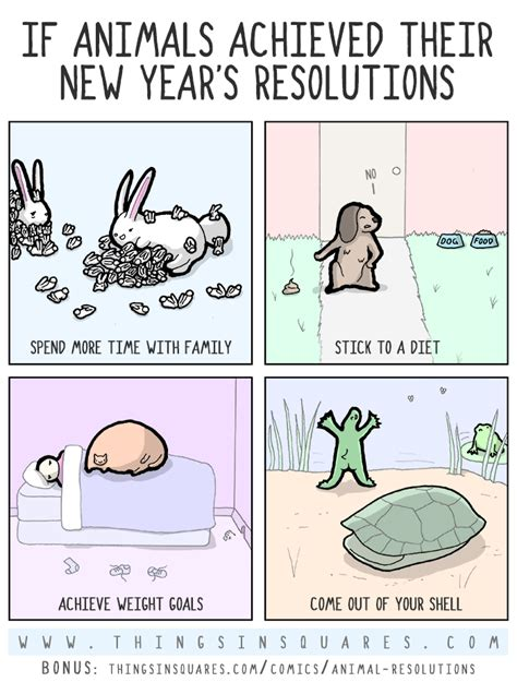 new year the years of the animals animal resolutions
