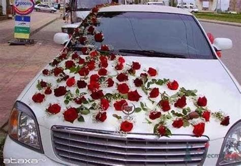Link Camp: Wedding Car Flower Decoration Collections 2013 (6)