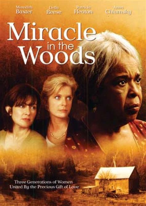 Miracle In The Woods For Free Miracle In The Woods Dvd Vision Christian And Dvds
