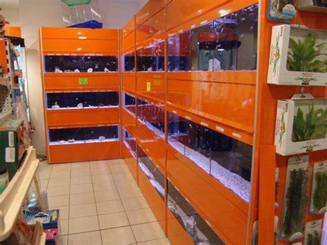 arredi per acquari acquari bionatura impianti arredamenti negozi animali