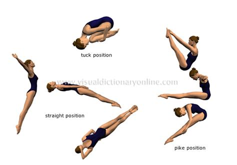 layout position gymnastics live to dive how to dive positions