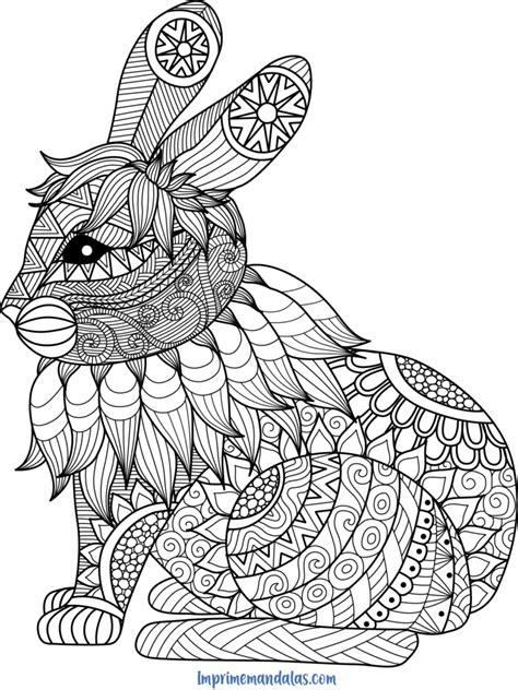 Mandala de Conejo • IMPRIME MANDALAS
