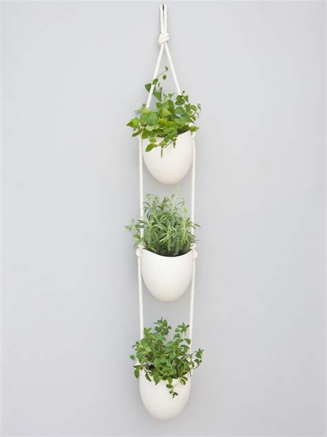 Indoor hanging pots home design and decor