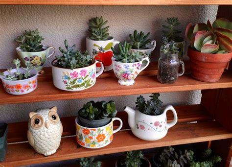 47 Succulent Planting Ideas with Tutorials   Succulent