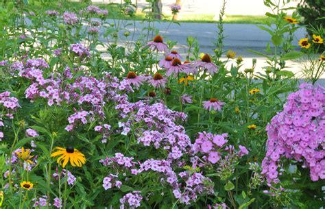 Summer Flower Garden Summer Garden Petals And Wings