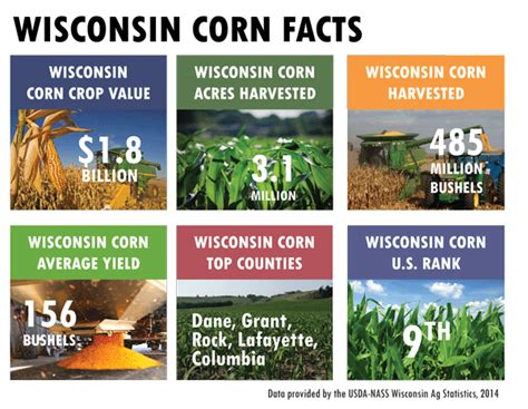 wisconsin corn facts wisconsin corn growers association