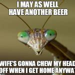 Mantis Meme - praying mantis head meme generator imgflip