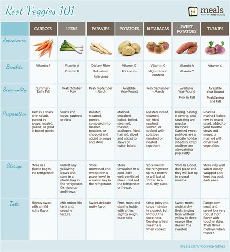 a list of root vegetables best photos of stem vegetables list green vegetables