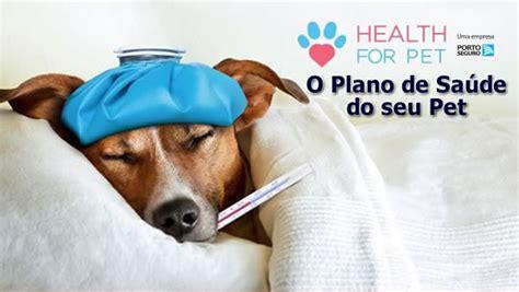 healthy for dogs alks consultoria corretora de seguros