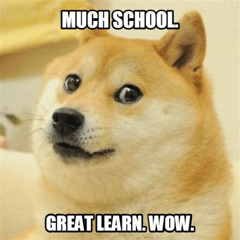 Make Doge Meme - create your own doge meme 28 images doge says no doge