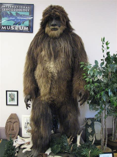 Bigfoot Email Search Bigfoot Cabesploration