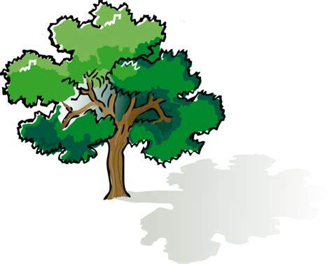 tree clipart oak tree clip at clker vector clip