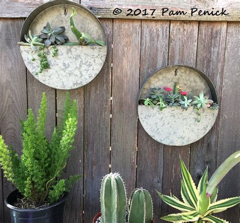 New Galvanized Wall Planters Hold Succulent Cuttings Digging Galvanized Wall Planter